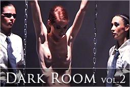 DarkRoomv2Logo_r.jpg
