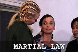 martial_logo.jpg