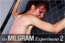 milgram2_logo.jpg