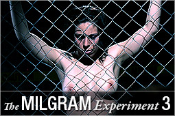 milgram3_logo.jpg